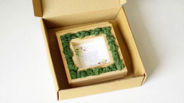 Living moss frame _ 3