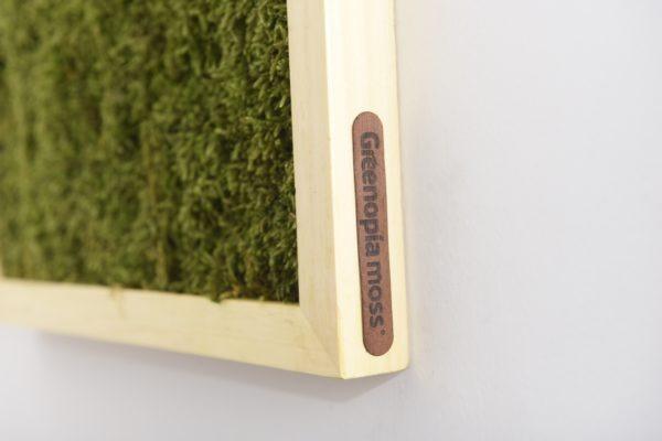 moss frame_ greenopia brading _ 03 _e