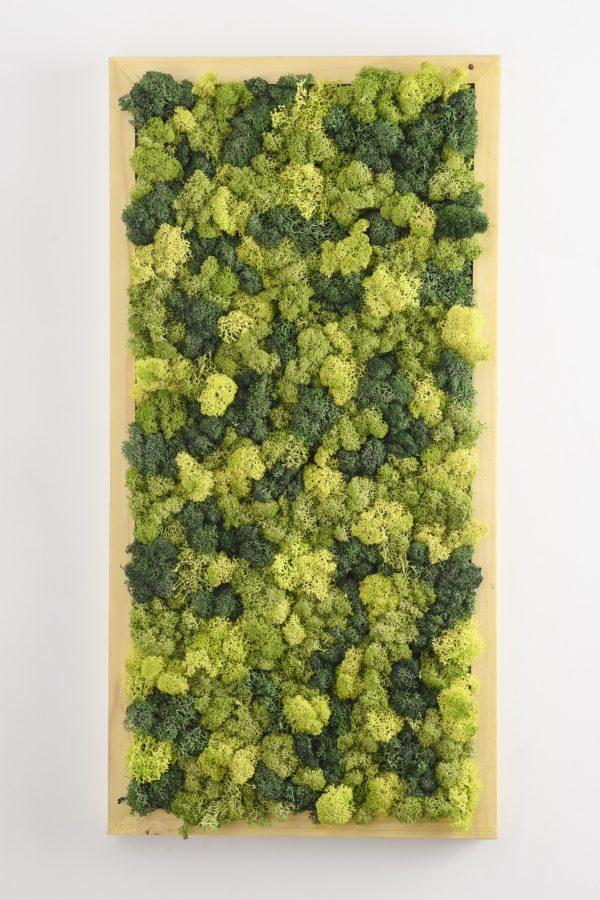mosaic pattern moss greenopia