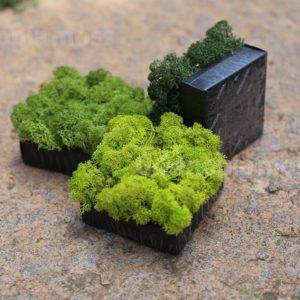 moss pixels by greenopia